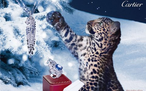 {Noël 2014} – Les plus belles et féériques publicités des maisons de luxe (Cartier, Dior, Vuitton, Chanel, E.Lauder, Guerlain…).