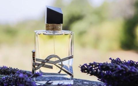 LIBRE YSL – La liberté a enfin son parfum !